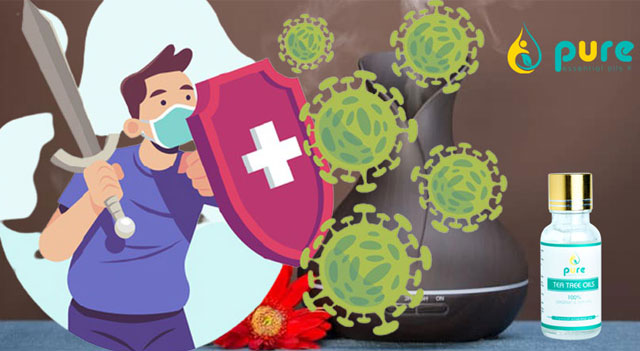 Cải thiện hệ miễn dịch ở người lớn tuổi trong thời gian dịch bệnh