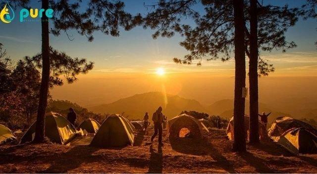 Kinh nghiệm tránh côn trùng đốt khi đi camping. Bạn đã biết chưa?